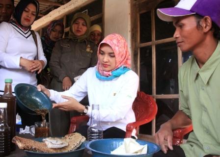 Bupati Probolinggo Puput Tantriana Sari saat Berkunjung ke peternak lebah. (dic)