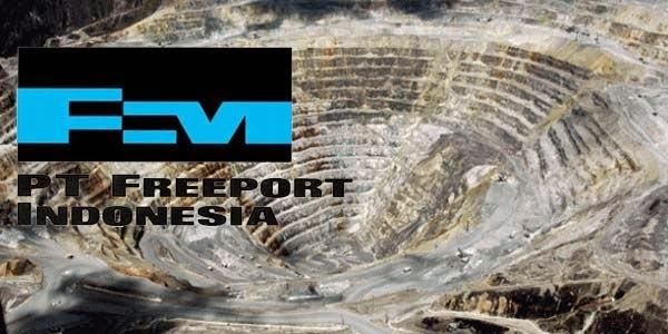 Freeport-Indonesia-reportasenews