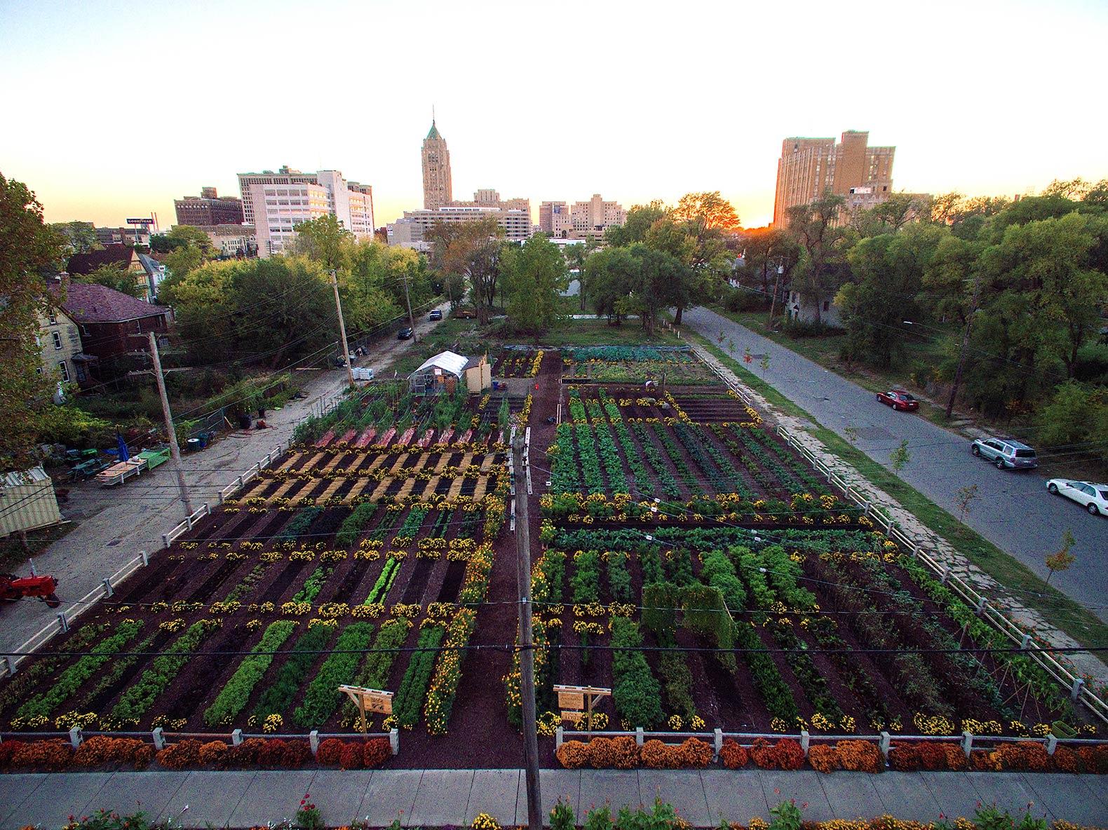 Pertanian kota padat di Michigan/ Inhabitat