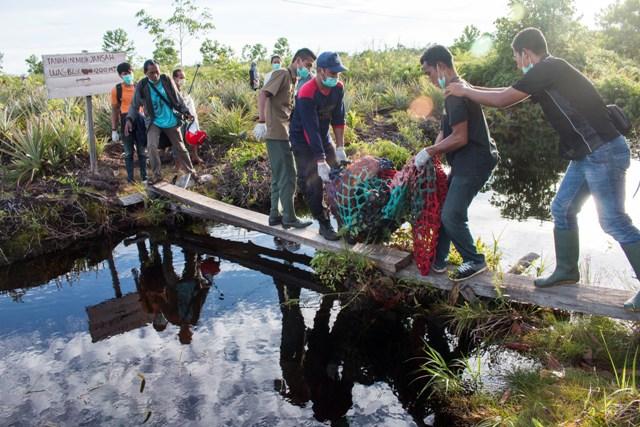 Evakuasi Orangutan oleh aktivis lingkungan IAS di Ketapang, Kalbar. (foto: Heribertus IAR)