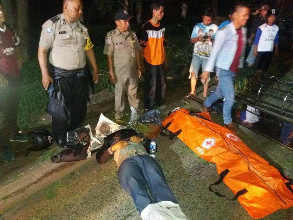 Dua orang tewas akibat tumbangnya pohon tua di Kampus UI. (Ist)