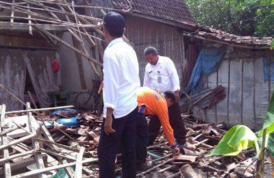 Akibat di terjang angin puting beliung rumah kakek di Situbondo roboh. (foto: fatur barri)