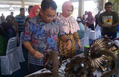 Wali Kota Binjai, Muhammad Idaham Walikota Binjai tinjauan kerajinan Batok kelapa dll.