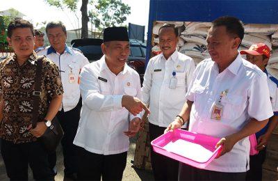 Wakil Bupati Situbondo Yoyok Mulyadi melakukan pengecekan kualitas beras yang akan dibagikan kepada warga. (foto: fat)