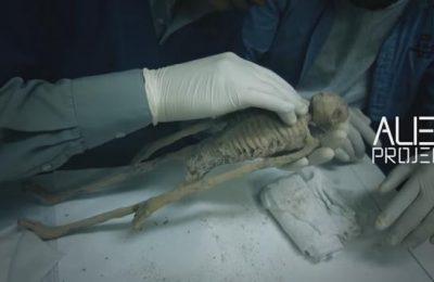 Mumi Nazca yang berbentuk aneh