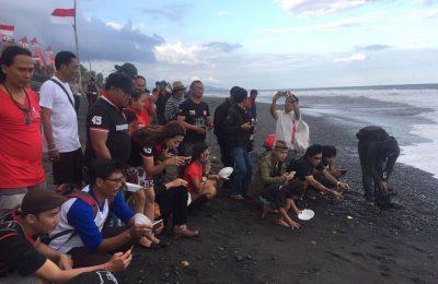 Pelepasan tukik oleh artis dan tim Wake Bali di Pantai Keramas, Gianyar, Sabtu(19/8)/Foto: Tjg