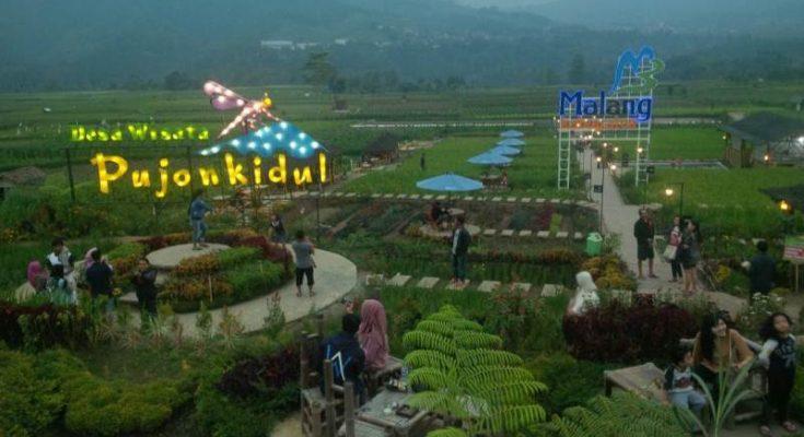 Cafe Sawah Tempat Nongkrong Asyik Di Desa Wisata Pujon Kidul Reportase News