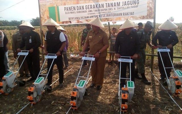 Wakil Gubernur Jawa Timur Syaifullah Yusuf  didampingi Bupati Situbondo Dadang Wigiarto dan Wabup Yoyok Mulyadi, melakukan tanam jagung dengan menggunakan tehnologi pertanian dan panen jagung di areal tanaman jagung di Kelurahan Patokan, Kecamatan Kota, Situbondo.(foto fat)