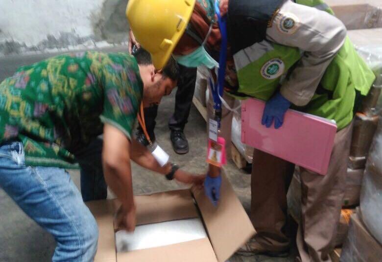 Petugas POPT Karantina Denpasar memeriksa daun mimba sebelum diekspor ke Amerika dan Taiwan.