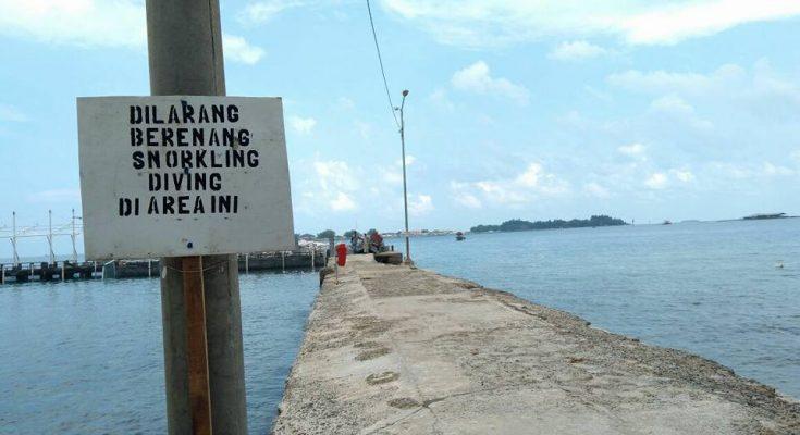 Tanda larangan aktivitas wisatawan melakukan berenang, snorkeling dan diving di Dermaga Pulau Pramuka, namun tidak jelas siapa yang bertanggungjawab. (foto: Ist)