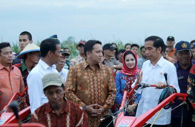 Presiden Jokowi (foto: ist)