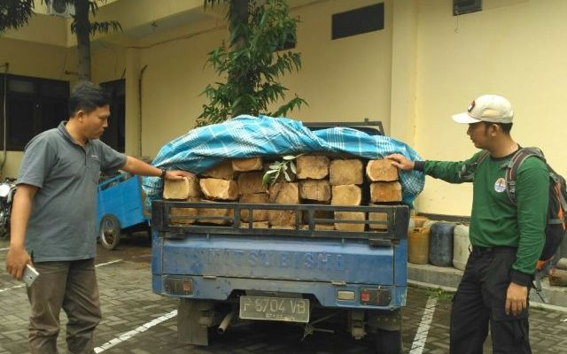 Barang bukti ilegal logging diamankan petugas (foto:fat)