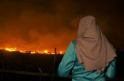 Kebakaran lahan gambut di desa Galang, Kecamatan Sungai Pinyuh, Kabupaten Mempawah, Kalimantan Barat. (foto:das)