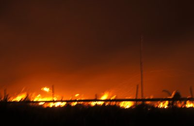 kebakaran lahan gambut. (foto:das)