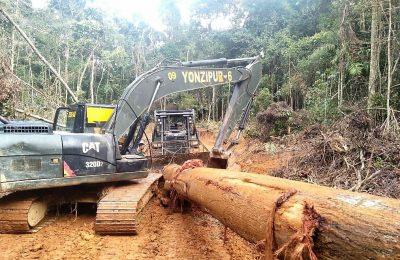 Pembuatan akses jalan darat yang akan menghubungkan Desa Beginci Darat dengan Desa Batu Lapis terus diupayakan oleh para prajurit Kodam XII/Tanjungpura. (foto:das)