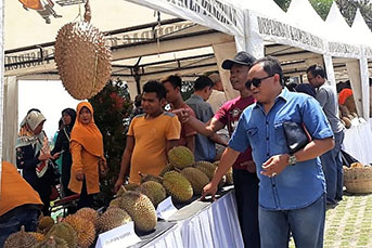 Kegiatan Gathering Durian & Parrot Lovers di D'Gunungan, Taman Dayu, Prigen, Kabupaten Pasuruan, Sabtu (16/3/2019) pagi. (Foto : abd)
