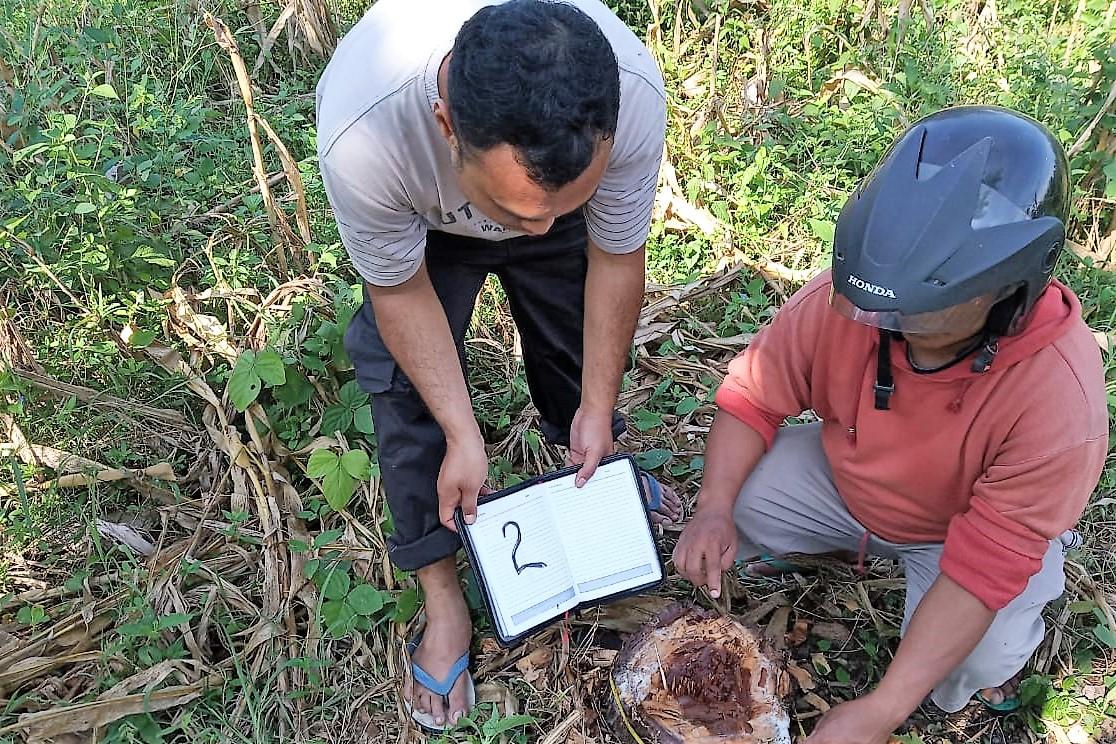 Petugas Gabungan sedang periksa dokumen kayu Jati Ilegal (foto: fat)
