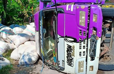 truk bernopol DK 9309 JP yang sarat dengan muatan katul, terguling di Jalan Raya Desa Kotakan, Kecamatan Kota, Kabupaten Situbondo. (foto:fat)