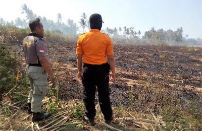 Tanaman tebu seluas 11 hektar lebih milik empat orang  petani di Desa Palangan, Kecamatan Jangkar, Kabupaten. Situbondo terbakar. (foto:fat)