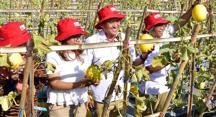Direktur Utama (Dirut) PG, Rahmad Pribadi bersama Dewan Komisaris dan jajaran Direksi saat pembukaan Petro Agrifood Expo (PAE) 2019 di Kebun Percobaan (Buncob) Petrokimia Gresik. (foto:dik)