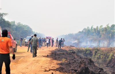 Kebakaran hutan di Pekanbaru, Riau.