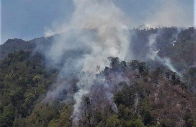 kebakaran di  hutan lindung Gunng Arjuno makin meluas. (foto:fat)