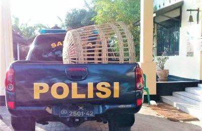 Petugas kurungan ayam diamankan di halaman depan Polres Situbondo. (foto:fat)
