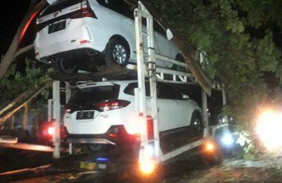 Suasana truk yang tertimpa pohon tumbang di jalur pantura Situbondo. (foto:fat)