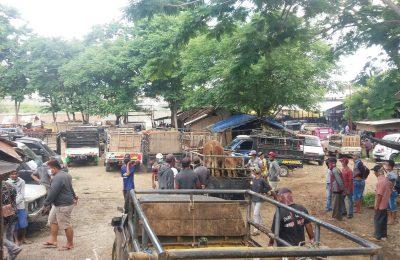 Kondisi pasar hewan di Desa Sumberolak, Kecamatan Panarukan, Situbondo. (foto:fat)
