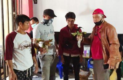 Tim operasi gabungan Ditjen Gakkum KLHK dan BKSDA Kalbar SKW II Sintang, Kementerian Lingkungan Hidup dan Kehutanan mengamankan Dua pemuda RB (23) dan MT (32) penjual tanaman langka khas Kalimantan, Nephentes clipeata. (foto:das)