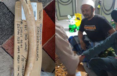 Gakkum, Kamis (4/6/2020) mengamankan RGK (40) warga Desa Padaasih, Kecamatan Pasir Wangi, Kabupaten Garut, pemilik 3 pipa rokok terbuat dari gading Gajah Sumatera