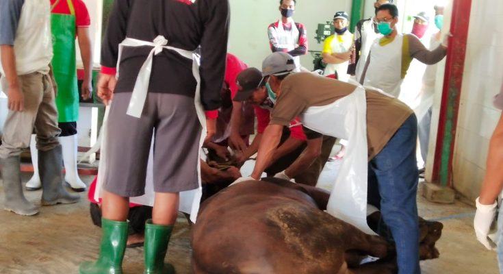 Pemotongan hewan kurban di RPH Situbondo, menerapkan protokol kesehatan Covid-19 secara ketat. (fat)