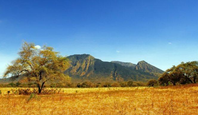 Taman Nasional Baluran, Jawa Timur. (Foto. Ist)